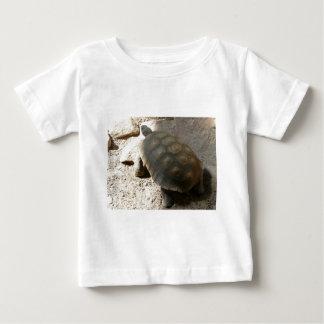 tortoise baby T-Shirt