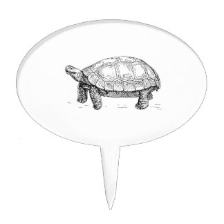 Tortoise Cake Toppers
