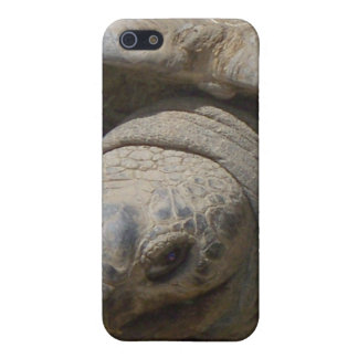 Tortoise Case For iPhone SE/5/5s