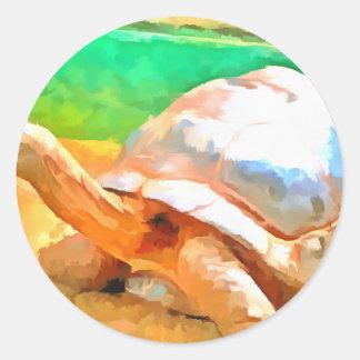 Tortoise Classic Round Sticker