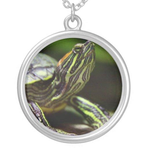 Tortoise Close Up Necklace