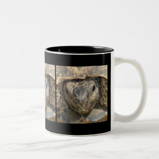 Tortoise Close Up Two-Tone Coffee Mug