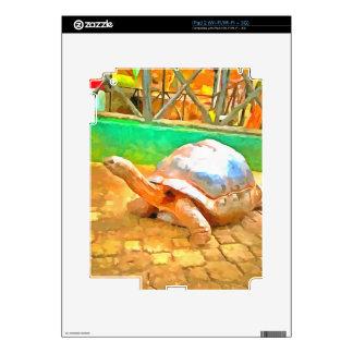 Tortoise Decal For iPad 2