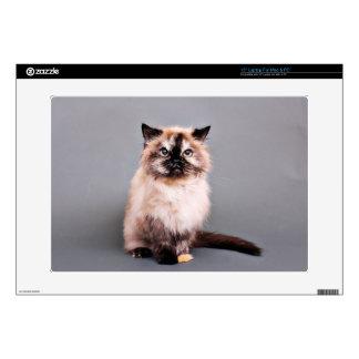 "Tortoise Himalayan Cat Portrait Photo 15"" Laptop Decal"