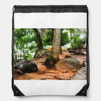 Tortoise in its own setting drawstring bag