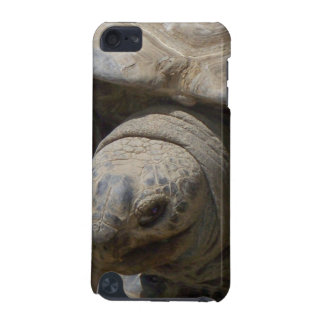 Tortoise iPod Touch 5G Cover