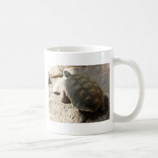 tortoise classic white coffee mug