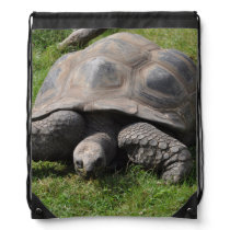 Tortoise on Grass Drawstring Backpack