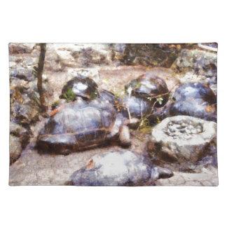 Tortoise path placemat