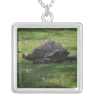 tortoise personalized necklace