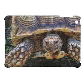 Tortoise Photo iPad Mini Case