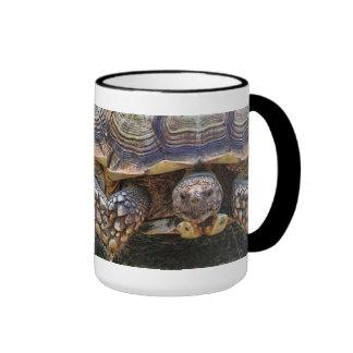 Tortoise Photo Ringer Mug