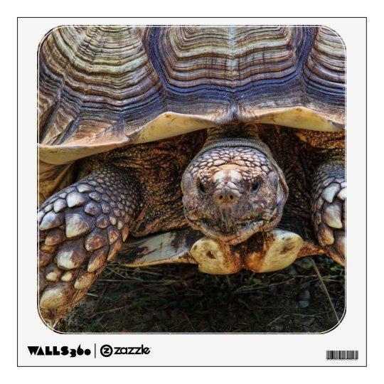 Tortoise Photo Wall Sticker