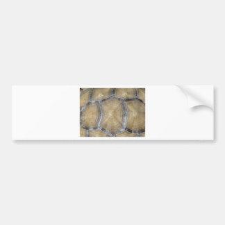 Tortoise shell bumper sticker