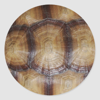 Tortoise Shell Close Up Classic Round Sticker