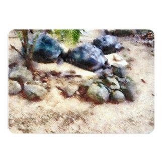 tortoise snoozing card