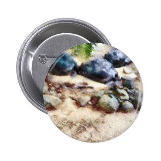 tortoise snoozing pinback button