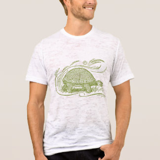 Tortoise Tee in Green