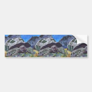 Tortoise turtle aquatic nature via watercolor aceo bumper stickers