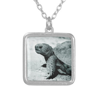 Tortoise & Turtle Custom Silver Plated Necklace