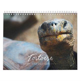 Tortoise Wall Calendar