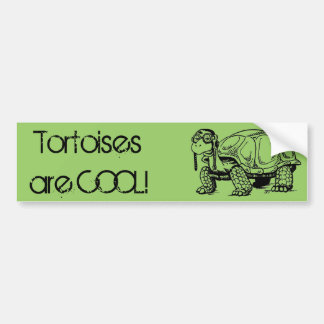 Tortoises are COOL! Bumper Sticker