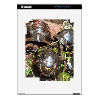 Tortoises at rest skin for iPad 2