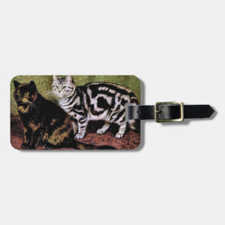 Tortoiseshell and Silver Tabby Cats Bag Tag