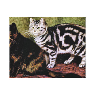 Tortoiseshell and Silver Tabby Cats Canvas Print