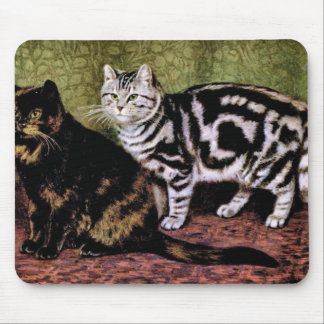Tortoiseshell and Silver Tabby Cats Mouse Pad