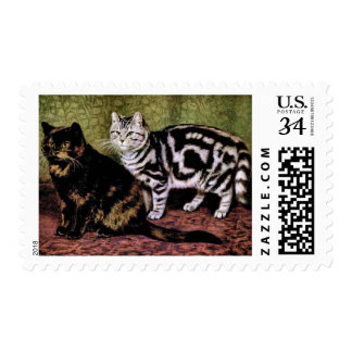 Tortoiseshell and Silver Tabby Cats Postage Stamp
