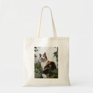 Tortoiseshell and White Cat Budget Tote Bag