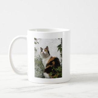 Tortoiseshell and White Cat Mugs