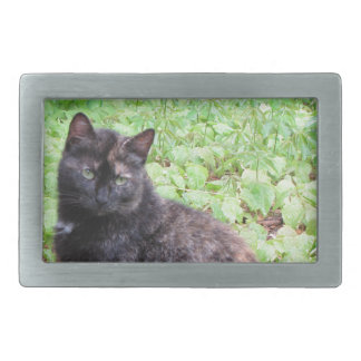Tortoiseshell Black Cat Garden Rectangular Belt Buckle