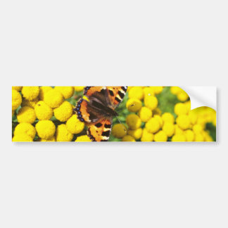 Tortoiseshell butterfly on tansy flowers bumper stickers