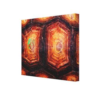 Tortoiseshell Canvas Print
