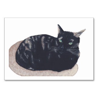 Tortoiseshell Cat Custom Flashcards Table Card