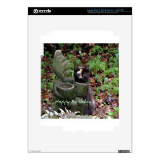 Tortoiseshell Cat HAPPY BIRTHDAY iPad 3 Decals