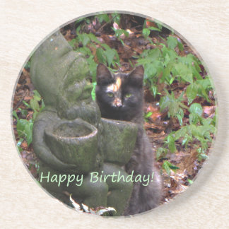 Tortoiseshell Cat HAPPY BIRTHDAY Sandstone Coaster
