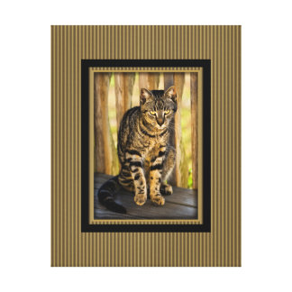 Tortoiseshell Cat Portrait, Closeup Animal Photo Canvas Print