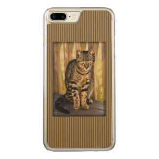 Tortoiseshell Cat Portrait, Closeup Animal Photo Carved iPhone 7 Plus Case