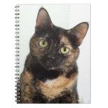 Tortoiseshell Cat Spiral Note Books