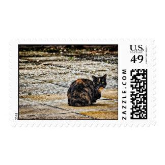 Tortoiseshell Cat Stamp