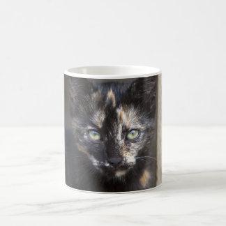 Tortoiseshell Kitten Classic White Coffee Mug