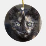 Tortoiseshell Kitten Double-Sided Ceramic Round Christmas Ornament