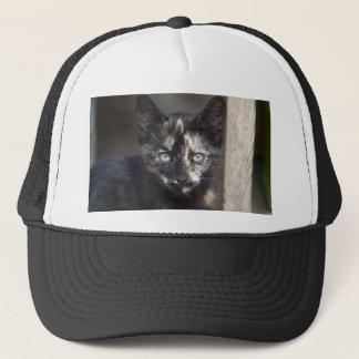 Tortoiseshell Kitten Trucker Hat