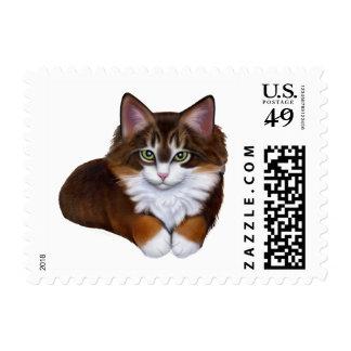 Tortoiseshell Maine Coon Kitten Postage