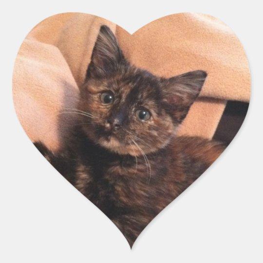 Tortoiseshell, Tortie, Tortie Kitten, Kitten, Cat, Heart Sticker