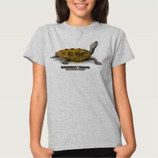 Tortuga acuática de Diamondback (tortuga acuática Playera