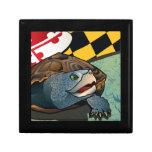 Tortuga acuática del ciudadano, la tortuga de Mary Cajas De Regalo